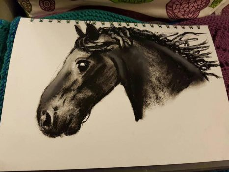 Horse  by femalefred