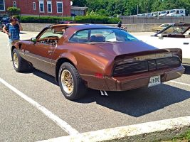 79 Trans Am Car Show June 22 - 2014 by Miahii