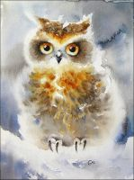 Winter Owl by cmwatercolors