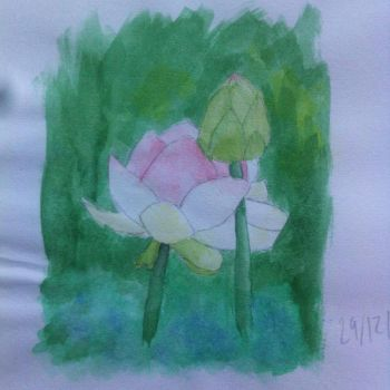 Water Lillies by SushiColoured