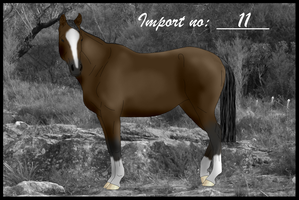 Import 11 by Orstrix