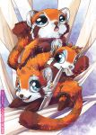 Red Panda's by tikopets