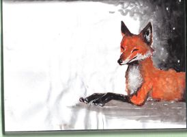 Red Fox by michellescribbles