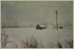 iPhoneography,  Snow to the End by Gerald-Bostock
