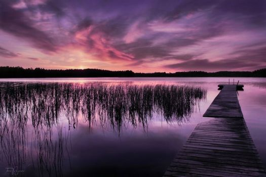 Purple Lake by Pajunen