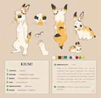 Kium 3.0 Reference Sheet by Kium