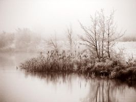 28.10.2012: Cold, Calm Morning by Suensyan