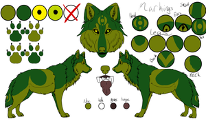 Forest Wolf Ref Sheet  by ShiraTheInfectedWolf