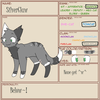 SilverPaw Ref by Crazyfox346