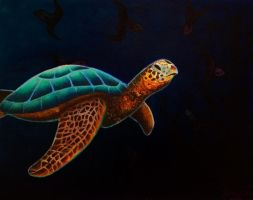 Turtle by ninfadelmar