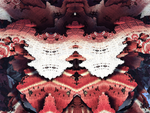 Blood Fractal butterfly by dimitriui