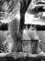 InfraRed Photo 2 by simre