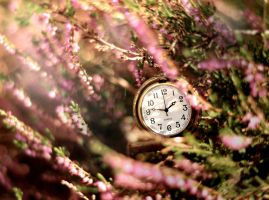 time is running out by FairyCat60s