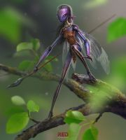 garden insect by RedreevGeorge