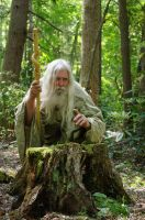 Pisqah Green Wizard 2011-05-24 34 by skydancer-stock