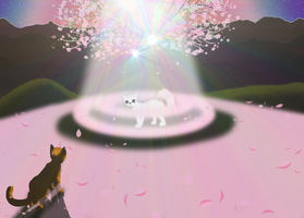 I Saw a *StarClan Warrior* by ZiggiEvaTroop