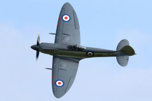Supermarine Seafire F.XVII by Daniel-Wales-Images