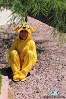 Adventure Time Jake Costume2 by SugiAi
