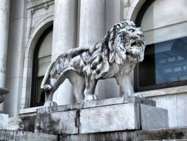 Library Lion, HDR by Lectrichead