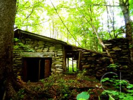 Rundown Cabin 2 by Champineography