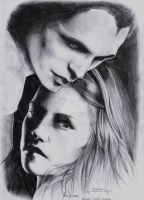 Edward 'n Bella - Twilight by pro-heaven