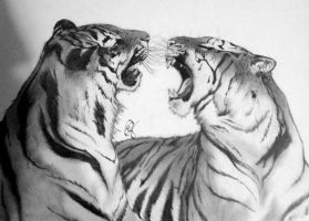 Bengal Tigers by GabrielleC-Drawings