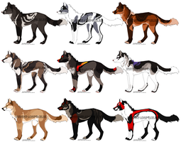 ~Canine adoptables~ by Squiggy-Adoptables
