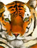 Oil Tiger (updated) by Skyfurrow