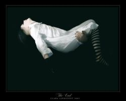 I  The End  I by lostgirl