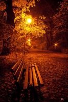 Park at night by Yowie1991