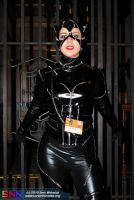 Catwoman.. Cornered.... Checkmate? by ntcrawler