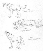 Wolfhome - Original Poses Set2 by Goldenwolf
