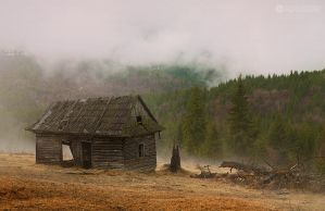 Foggy morning II by adypetrisor