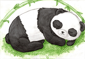 The Sleeping Panda by Ode-Lia