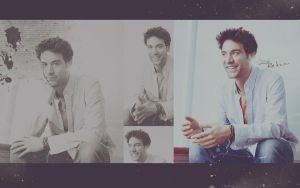 Josh Radnor wall by barusse