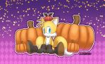 Halloween 2014 by sonic75619