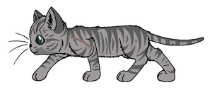 Jayfeather by WarriorandSeeker