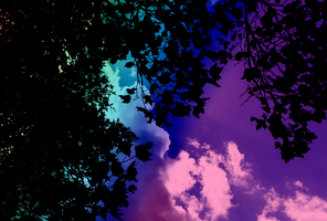 Abstracted Sky by exxodium