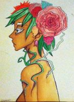 Bouquet of Roses by Achonan