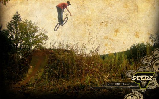 bmx SEEDZ wallpaper by Ferstlair