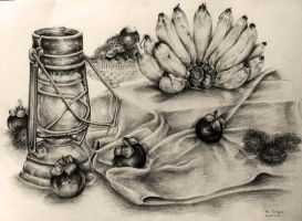 Still life drawing since 2003 #4 by Feohria