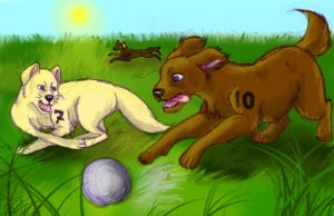Beckham and Owen Football Dogs by Orlifan