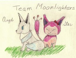 PMD-E Gift Art: Team Moonlighters by GG3095