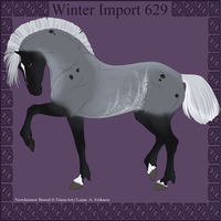 Winter Import 629 by ThatDenver