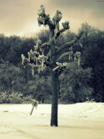 freezing tree by aiyiee