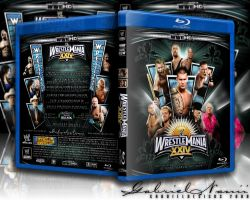 WWE WRESTLEMANIA XXIV BluRay by TheNotoriousGAB