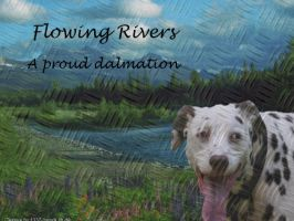 Forgiving Rivers Dalmation by WaterSinger