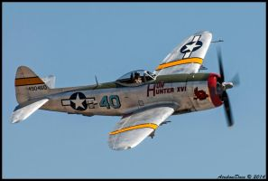 Hun Hunter XVI Republic P-47D 490460 by AirshowDave