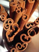 Cinnamon Sticks by Tashderouille