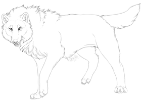 Free Wolf Lineart '2014' ( PNG ) by Ashelite